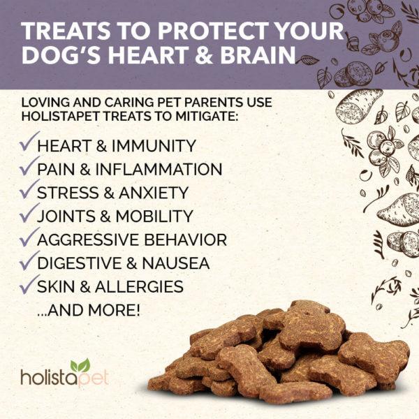 holistapet cbd dog treats heart and immune benefit list