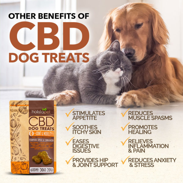 Holistapet CBD dog treats benefits for joint and mobility dog biscuits