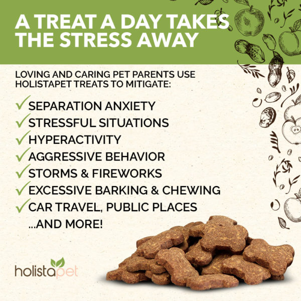 holistapet cbd stress and anxiety treat helps treat and mitigate seperation anxiety stressful situations hyperactivity agressive behavior and more