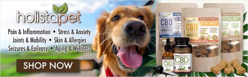 holistapet-cbd-for-pets-buy-now