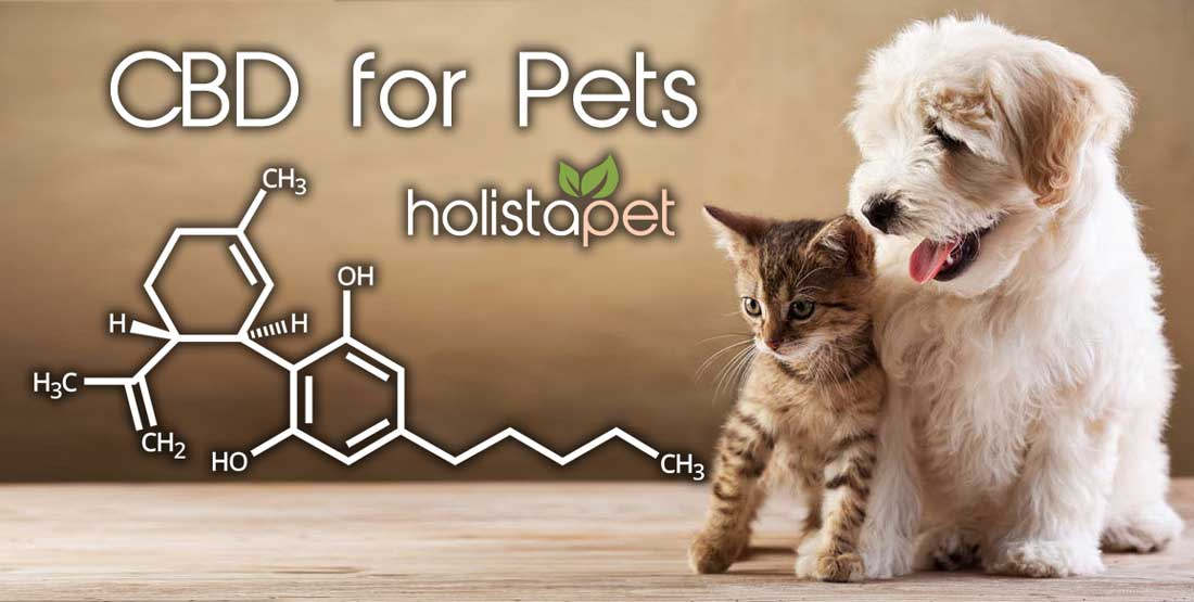 side-effects-of-cbd-for-pets