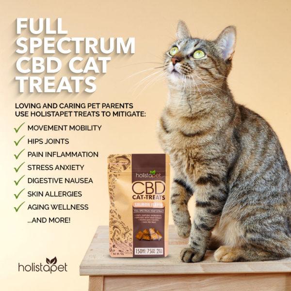 CBD Cat treats part of bundles Holistapet Full Spectrum benefits